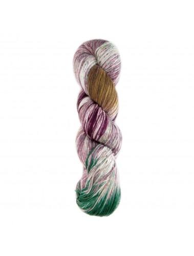 Araucania Huasco Sock yarn 07