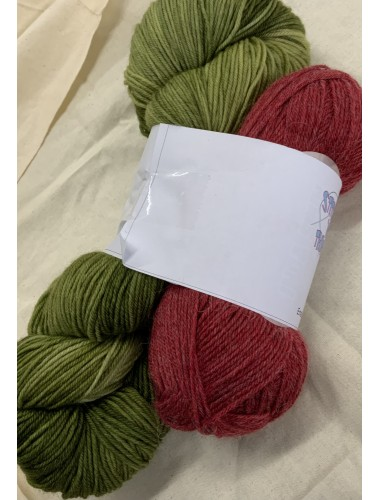 Free and Easy Shawl Kit- Forest fire with alpaca