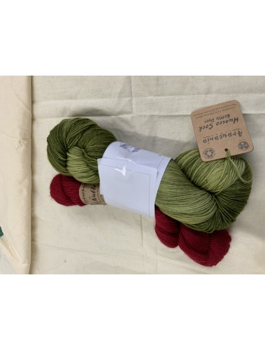 Free and Easy Shawl Kit- Forest fire & merino silk