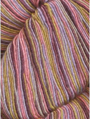 Araucania Nuble Paint 4 ply 1016