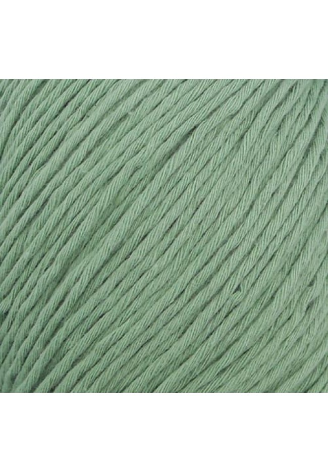 Cottonwood organic 8 ply cotton Olive 12